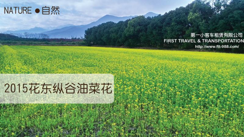 2015花東縱谷